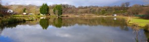 cropped-lake-of-tranquility1.jpg