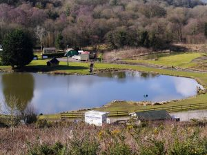 Nestling in the heart of the Flintshire countryside is the Lake of Tranquility.